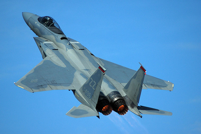 Image result for F-15 Australia avalon